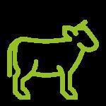 iconos-raza-pirenaica-vacas